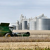 Farmers were taking advantage of the dry, sunny weather to get out in the fields to harvest the crops that ready to be cut like this farmer cutting the field of beans along County Road 300 West, between CR 500 & 600 North Tuesday near Frankton.
