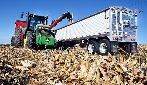 Filbrun Family Farms harvesting corn on CR 1000S near Markleville Wednesday morning.