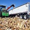 Filbrun Family Farms harvesting corn on CR 1000S near Markleville Wednesday morning.