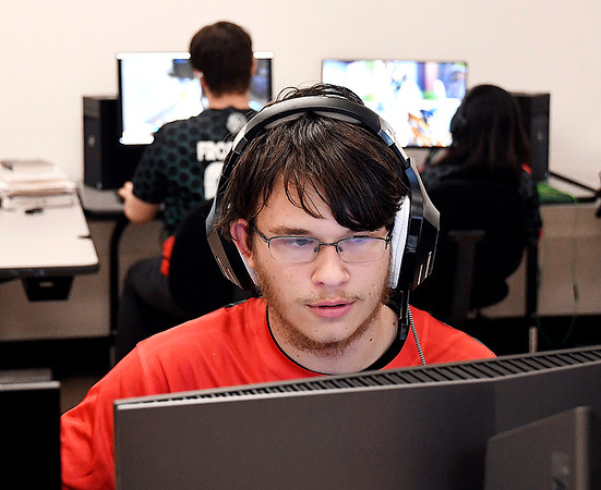 Senior Ethan French is co-captain of the Anderson High School E-Sports Club.