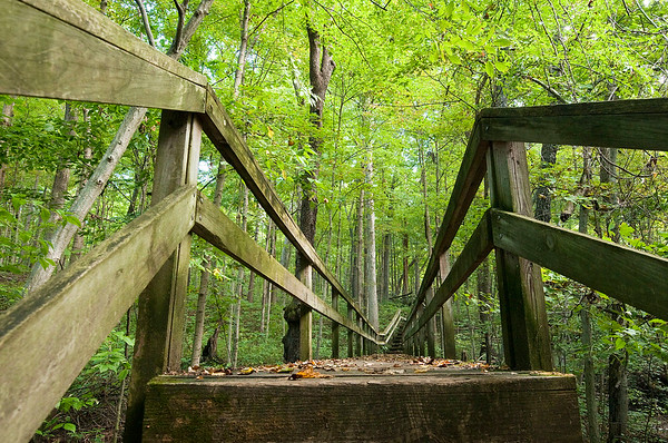 Mounds trails