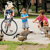 Jan Carey and her grandson Jude Sangar,2, took a Sunday morning bike ride to Falls Park in Pendleton where they fed ducks and enjoyed the playground. Carey and Jude got an early start due to a chance of afternoon rain and thunderstorms.