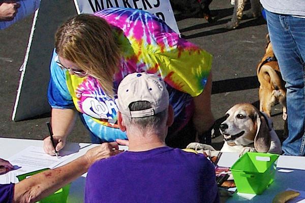 Debie Jones and her beagle Cooper register for the Furlong on Sunday.