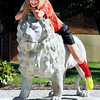 John P. Cleary | The Herald Bulletin<br /> Liberty Christian seventh grader Kaitlyn Smith, 12, finds the school's Lion mascot a good place to rest while waiting to leave the school to go play a soccer match Monday afternoon.