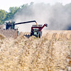 John P. Cleary | The Herald Bulletin<br /> With the above normal temperatures and clear sunny days all this week the conditions have been favorable for farmers to get out into their fields and start bringing in the harvest like this farmer cutting corn south of Pendleton along County Road 600 South.