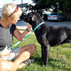 Stu Hirsch | The Herald Bulletin<br /> Maleah Stringer, executive director of the Animal Protection League, plays with one of the dogs at the facility.
