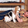 "Mark Maynard | for The Herald Bulletin<br /> Lennie (Daniel Clymer) plays with farmhand Candy's dog (Angela Basset-Ball Jones) in a scene from ""Of Mice and Men""  at Anderson's Mainstage Theatre."
