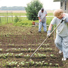 Don Knight | The Herald Bulletin<br /> Rex and Penny Mercer work in their vegetable garden on Saturday. The Mercer's get exercise and fresh produce from their garden which has the added benefit of saving them money on their grocery bill.