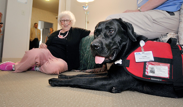 John P. Cleary | The Herald Bulletin<br /> Bethany Pointe resident Shirley MacMurray gets down on the floor to Camille's level to greet her when Linda Sheppard stops by to visit her.