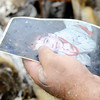 Don Knight | The Herald Bulletin<br /> Johnathon Stevens holds a photo of his son Hunter he found in his apartment that was destroyed by a fire. Stevens said he is grateful for the outpouring of support his family has received since the fire.