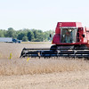 Don Knight | The Herald Bulletin file photo<br /> A combine works in a soybean field south of Erskine Elementary School in Anderson on Wednesday.