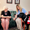 John P. Cleary | The Herald Bulletin<br /> Bethany Pointe resident Shirley MacMurray reaches out to let Camille come greet her as LPN Linda Sheppard stops by with Camille to visit and check up on her.