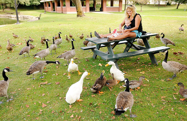 Don Knight | The Herald Bulletin<br /> Lisa Helpling and her grandson Cole Ginley, 16 months, feed the ducks and geese at Fall's Park on Tuesday.