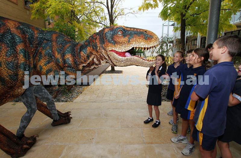 24-3-11. Walking With Dinosaurs at Bialik College. Photo: Peter Haskin