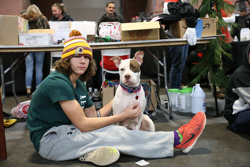Charlie, 2 year Terrier mix was adopted by Jacob, 15 and his family, at the Mega Adoption Event at the Armory, 22 S.  23rd St., Philadelphia, PA. on December 3, 2016.  ( TONI FARINA / Staff Photographer )