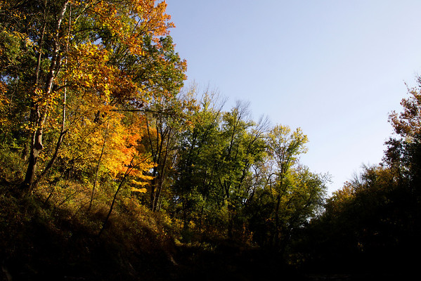 Fall colors set in above Silver Creek at the border of Clark and Floyd Counties. Staff photo by Christopher Fryer
