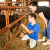 Jackson Faulstick, 8, and his mother Sasha, both of New Albany, share a moment with a miniature horse while visiting the Floyd County 4-H Fair in New Albany on Wednesday afternoon. Staff photo by Christopher Fryer