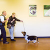 "Dog trainer Matthew Duffy, left, works with Clara Markham, Louisville, and her basset hound Intermezzo, or Mari for short, during a session at Duffy's Dog Training Center in Jeffersonville. Duffy recently wrote ""Dog Training and Eight Faces of Aggressive Behavior: A Master's Solution to Barkers, Growlers and Biters"" which is scheduled to be released in early December. Staff photo by Christopher Fryer"