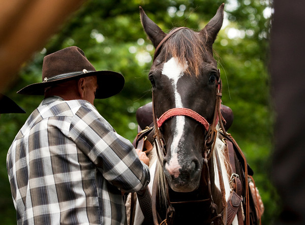 Richard Mills preps Willy, a Tennessee walking horse, on Saturday morning in Clarksville before embarking on a 3-4 month ride, starting at the Falls of the Ohio and ending in Great Falls, Mont. Mills is making the journey to raise awareness and funds for neglected and abused horses. He plans to ride about 25 miles a day following the trail that Lewis and Clark used for their exploration of the West in the 19th century. Staff photo by Christopher Fryer