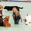 Mckenna Kitchen, 10, welcomes Frisco and Chopper, Steve Pope's white German shepherds, while she and her brother, Shepherd, 8, play with Sabbi, their grandparents golden retriever, during the Pooch Plunge at the Aquatic Center in Jeffersonville on Saturday afternoon. Staff photo by Christopher Fryer