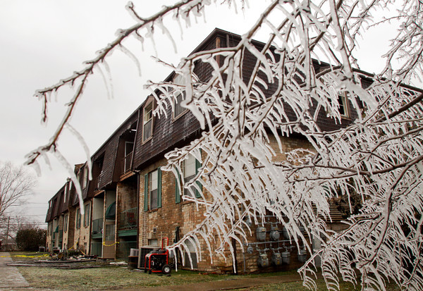 Ice hangs from the limbs of a tree next to the Cedar Ridge apartment complex, 2313 Grant Line Road, after a blaze destroyed several apartments early Friday morning in New Albany. Staff photo by Christopher Fryer