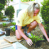 Voluforms employee Jana Meyer plants a hosta around the Center for Lay Ministries Friday morning as a part of the Metro United Way Day of Action. More than 100 volunteers helped spruce up various service agencies around Clark County. Staff photo by C.E. Branham
