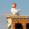 A giant chicken sits on top of the Zaxby's restaurant near the intersection of Charlestown Road and Interstate 265 in New Albany on Tuesday afternoon. The size and makeup of the chicken do not meet the city's criteria for signage and an investigation has been requested to have it removed. Staff photo by Christopher Fryer