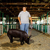 Joseph Hobson, 16, of Marysville, stands with Martin, his champion pig, in the swine barn at the Clark County 4-H Fair on Thursday afternoon. Martin is from a litter of eight pigs that all survived the March 2 tornadoes. Staff photo by Christopher Fryer