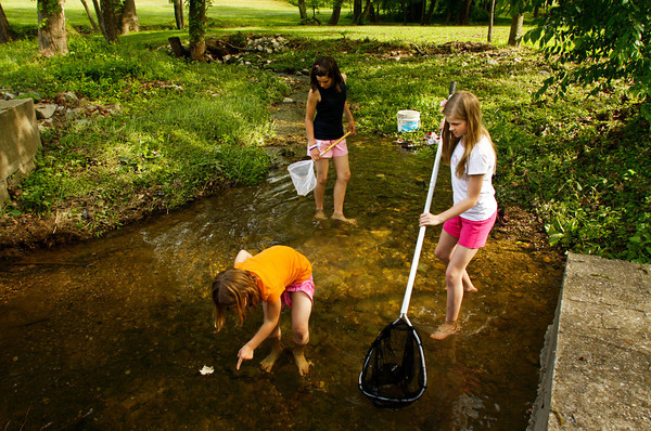 Mattie Elkin, 6, wades through the water as a spotter while her older sister Lillie, 12, center, both of Morrisville, N.C., and their friend Jazzy Shireman, 11, of Floyds Knobs, work the nets while they hunt for crawdads and other critters in a creek next to Old Vincennes Road in Floyds Knobs on Friday afternoon. Staff photo by Christopher Fryer
