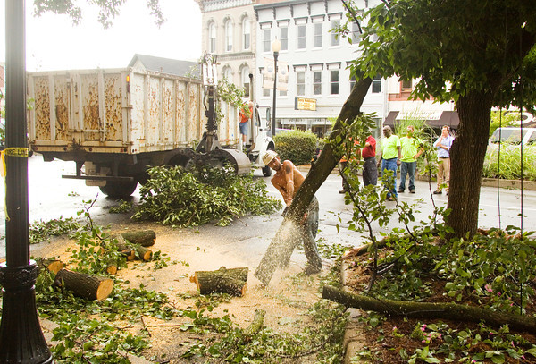 A New Albany Street Department crew works to remove a tree limb that fell on a van parked along Market Street in downtown New Albany after storms moved across the region on Wednesday afternoon. The severe weather left hundreds of homes and businesses in Clark and Floyd counties without power. There were also numerous reports of damaged trees across the area. Staff photo by Christopher Fryer
