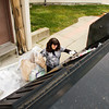 Recycling associate Jodi Brough, of New Albany, moves recyclables into an outside bin during her shift at Floyd Memorial Hospital on Wednesday morning in New Albany. Brough is a special needs adult that works 20 hours a week at the hospital taking care of all on site recycling collection. Staff photo by Christopher Fryer