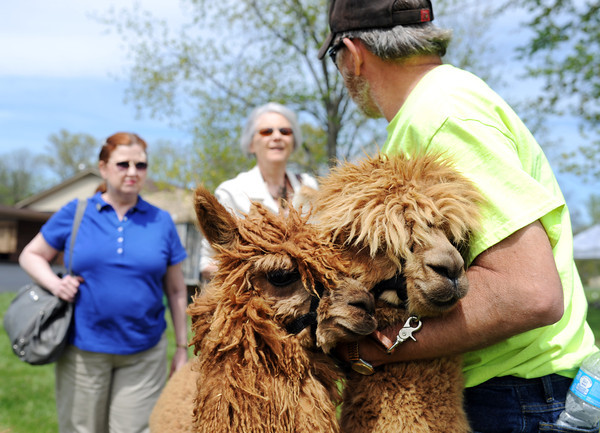 Right to Left: Kyle Traub, Charlestown, holds back two of his alpacas while talking with Louisville residents, Judy Pilsmeier and Ramona Hyrne, about the alpaca's coat during the Indiana Fiber and Music Festival. The festival, with free admission, was held Saturday and Sunday at the Tri-County Shrine Club in Clarksville.<br /> Staff photo by Tyler Stewart