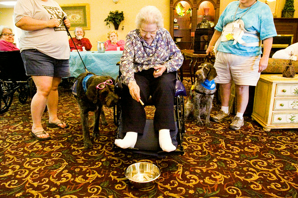 Dorothy Duggins, New Albany, plays the dog bone toss with Blackberry, left, and Cougar the therapy dogs during the Dog Days of Summer Bash at Autumn Woods Health Campus in New Albany on Tuesday morning. The simple game is designed for all levels of ability so that any resident at the facility can participate. Staff photo by Christopher Fryer