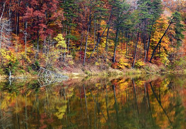 Clark County State Park, Henryville.  Staff photo by Tyler Stewart