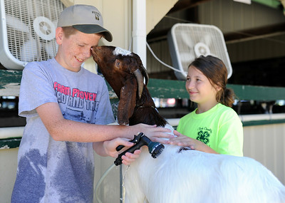 2014 Floyd and Clark County 4-H fairs