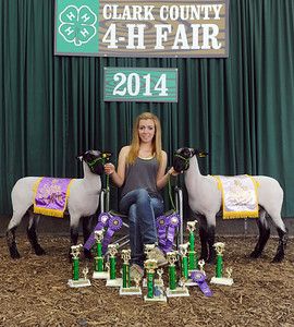 Breann Hendrickson, 19, Charlestown, received 10 trophies, several blue ribbons, a Grand Champion Market Lamb banner, a Reserve Grand Champion banner, a jacket and even a chair while competing in this year's Clark County 4-H. Her livestock, including the two Hampshire market lambs that awarded her the grand and reserve grand champion banners, were born and raised at the Hendrickson's Little Bull Creek Farms in Charlestown. Hendrickson will now be moving on to national competitions with the completion of this year's Clark County 4-H. Staff photo by Tyler Stewart