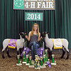 Breann Hendrickson, 19, Charlestown, received 10 trophies, several blue ribbons, a Grand Champion Market Lamb banner, a Reserve Grand Champion banner, a jacket and even a chair while competing in this year's Clark County 4-H. Her livestock, including the two Hampshire market lambs that awarded her the grand and reserve grand champion banners, were born and raised at the Hendrickson's Little Bull Creek Farms in Charlestown. Hendrickson will now be moving on to national competitions with the completion of this year's Clark County 4-H.<br /> Staff photo by Tyler Stewart