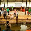 Competitors work with their hogs during the Floyd County 4-H Fair Swine Show at the fairgrounds in New Albany on Tuesday morning. The fair runs through Saturday, July 12. Staff photo by Christopher Fryer