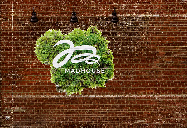 A logo for Madhouse, a home decor and gift boutique, is pictured on the side of the business located at 151 E. Spring St. in downtown New Albany. The boutique opened in October of last year. Staff photo by Christopher Fryer
