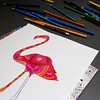 Colored pencils surround a flamingo design on a table in the Strassweg Auditorium during Adult Coloring at the New Albany-Floyd County Public Library in downtown New Albany on Wednesday afternoon. Staff photo by Christopher Fryer