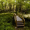 A walking bridge is pictured along a section of The Silver Hills Historic Nature Trail near Falling Run Creek in New Albany. Staff photo by Christopher Fryer