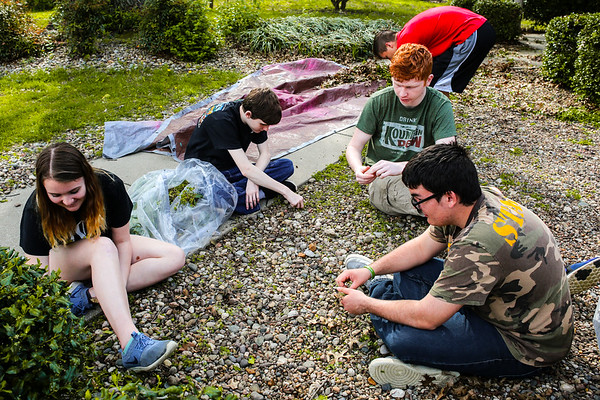 A group of freshmen and sophomores from the Renessaince Academy pull weeds at Personal Counseling Service Inc., on Friday in Clarksville. Staff Photo By Josh Hicks