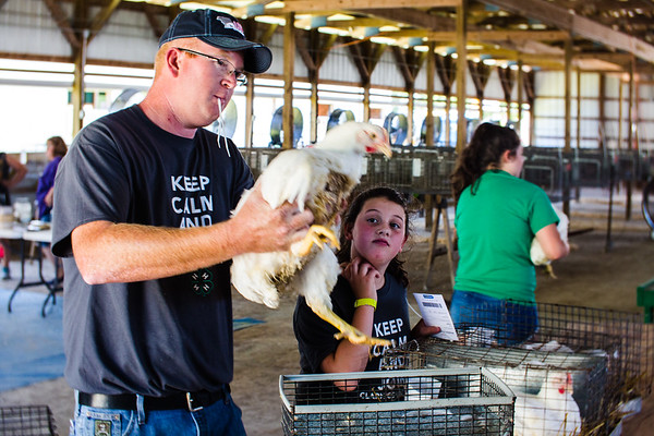 Cory Patton, who sits on the 4-H corporation board and chair of the goat board, assists in the weighing in of a chicken alongside Sophia Whiteford, 9.