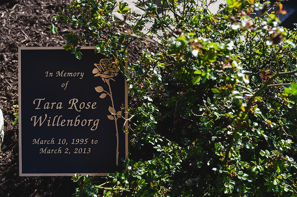Rose bushes surround a memoriam for Tara Willenborg in Tara's Garden outside of St. Luke's United Church of Christ in Jeffersonville. Staff photo by Tyler Stewart