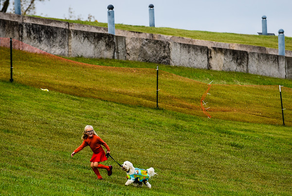 Hannah Detenber, 6, runs her dog, a 6-year-old golden doodle named Buddy, up the amphitheater hill to join the Pet Costume Contest. Hannah and Buddy dressed as Velma and the Mystery Machine from Scooby-Doo. Staff photo by Tyler Stewart