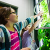 Isabella Ratlif, 8, left and Carly Cozart, 9, pic, lettuce from a verticle garden in a classroom at Green Valley Elementary. Staff Photos By Josh Hicks