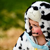 Avery Price, 4, watches the other competitors while wearing his dalmation costume for the Pet Costume Contest. Avery and his dog, a 12-year-old aussie mix named Foster, reversed roles for their dog and human costume. Staff photo by Tyler Stewart