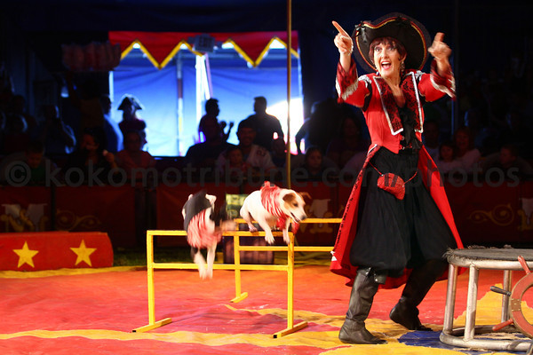 5-17-12<br /> Kelly Miller Circus operating out of the big tent in Future Park.<br /> Cathy Rice with her dog tricks.<br /> KT photo | Tim Bath