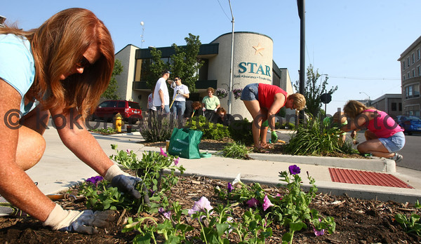 5-19-12<br /> Voluteers plant flowers and other plantings in the downtown area on Saturday morning. Staci Rice planting while other pull weeds at Walnut and Union Street.<br /> KT photo   Tim Bath