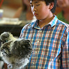 7-12-12<br /> 4H auction at Howard County Fair<br /> Ryan Ziliotto gazes down at his poultry he is auctioning off at the 4-H auction at the Howard County fair.<br /> KT photo | Kelly Lafferty